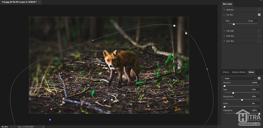 تار کردن قسمتی از عکس با ابزار Iris Blur