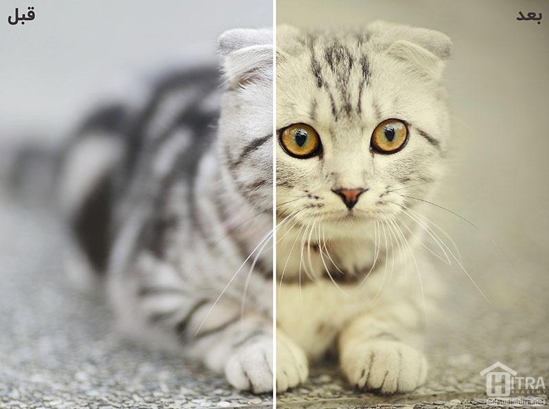 اکشن تغییر رنگ تصاویر در فتوشاپ
