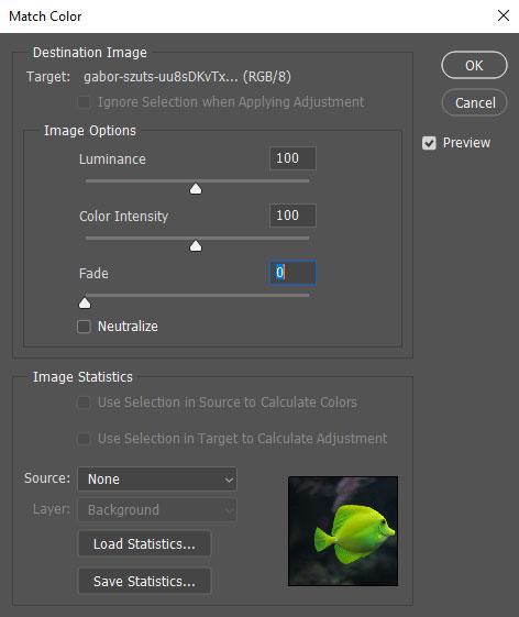 آموزش اصلاح رنگ در فتوشاپ با Match Color